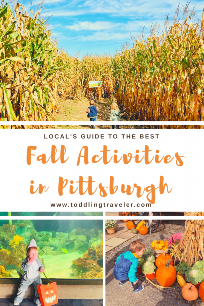 Fall Activities in Pittsburgh Toddling Traveler Pinterest