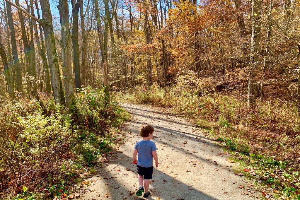 Easy Hike in Laurel Highlands Laurel Hill State Park