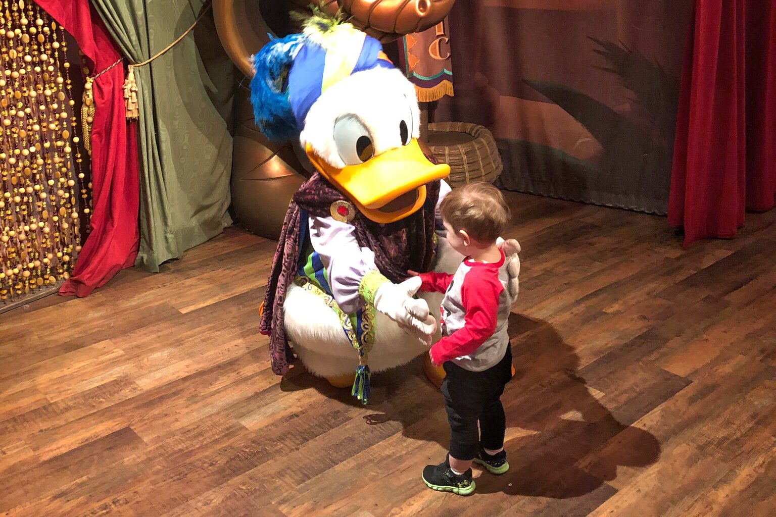 Donald Duck character meet Disney with Toddlers Toddling Traveler