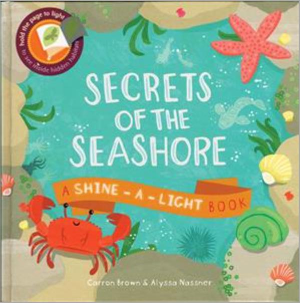 Usborne Shine a Light Seashore Book Toddling Traveler