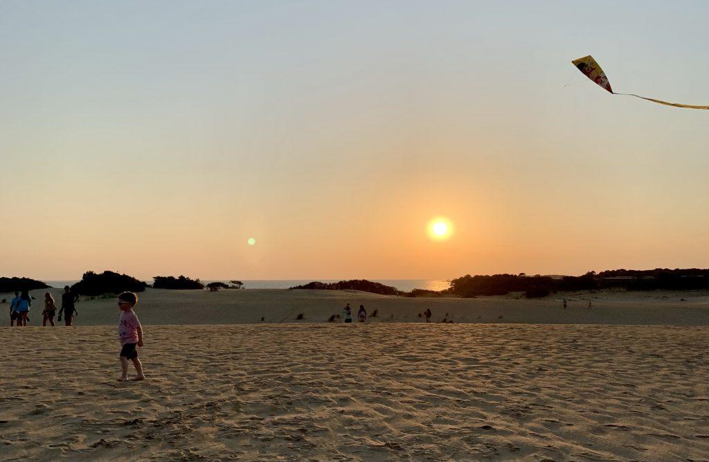 Kite Flying at Jockey's Ridge State Park Sand Dunes in Outer Banks Toddling Traveler