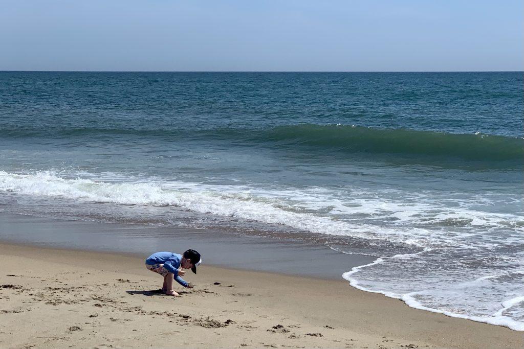 Things to do in Duck North Carolina Beach Toddling Traveler